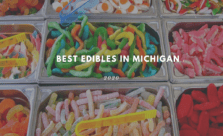 best edibles in Michigan 2020
